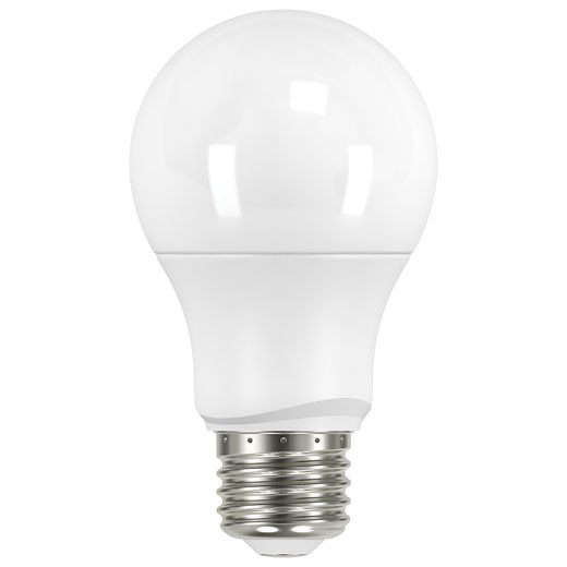 Light Bulbs & Accessories